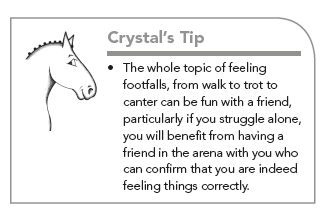 Crystal System Dressage