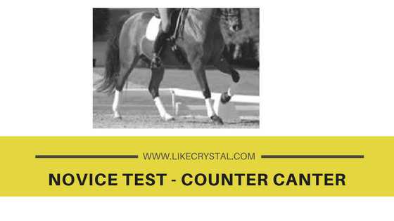 Novice Test – Counter Canter