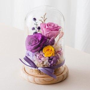 永生花玻璃盅罩-永生花大型紫色封面