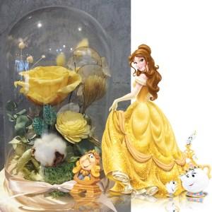 玻璃盅罩,貝兒公主,喜歡生活乾燥花店