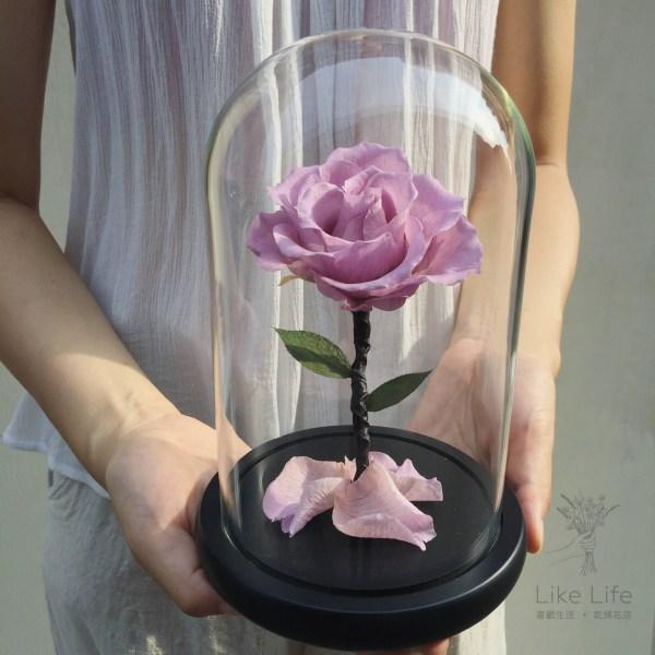 永生玫瑰花玻璃罩紫色封面,台北永生花推薦,喜歡生活永生花店