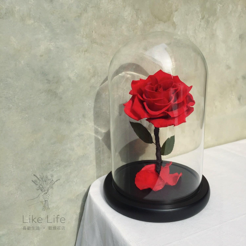 永生花玻璃罩紅色封面,台北紅色永生玫瑰花玻璃罩