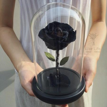 永生玫瑰花玻璃罩黑色手拿封面
