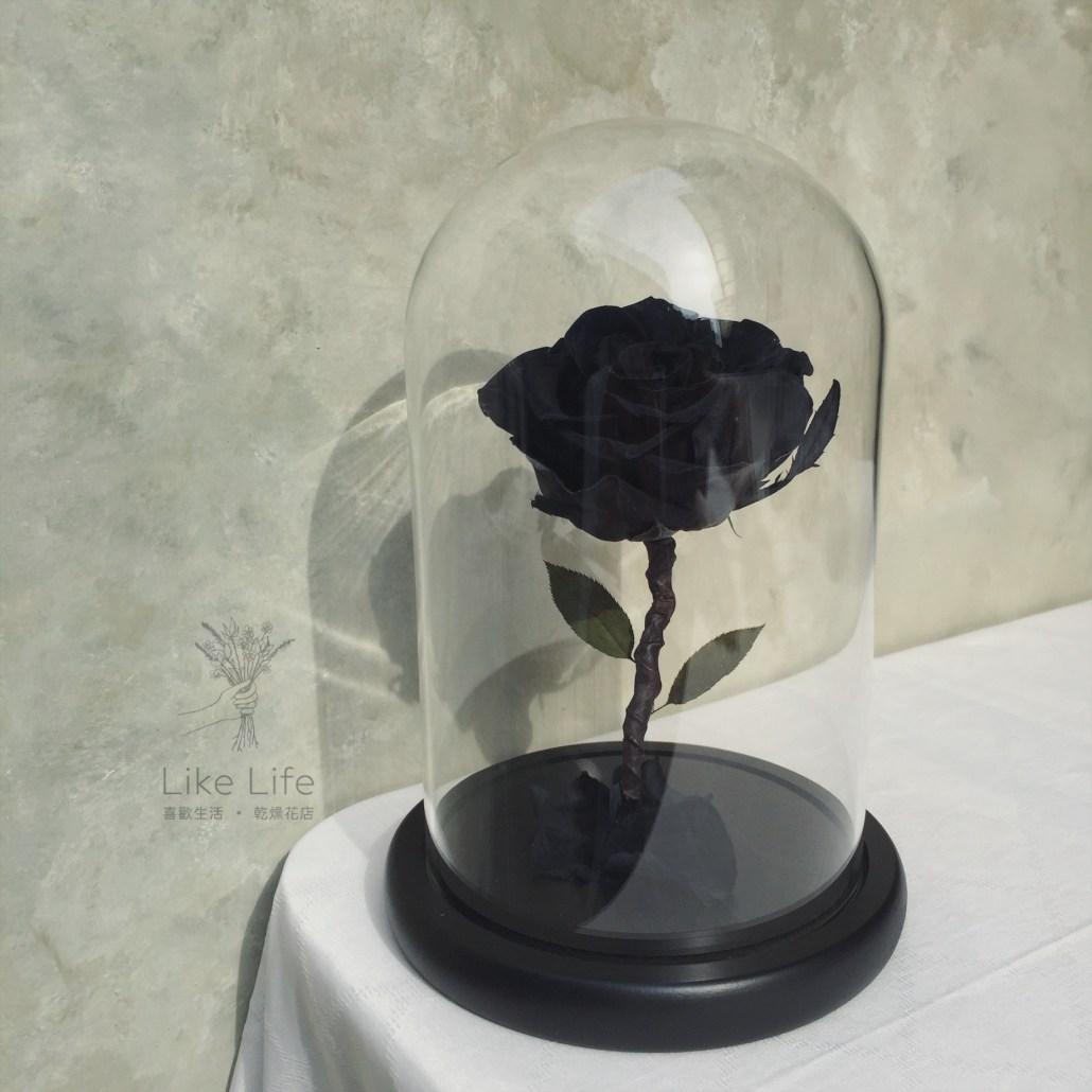 永生玫瑰花玻璃罩黑色意境
