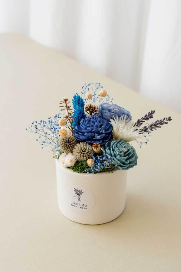 乾燥花盆栽中型藍色側面,乾燥花盆栽推薦台北