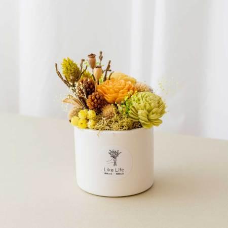 乾燥花盆栽中型黃色首圖,乾燥花盆栽推薦台北