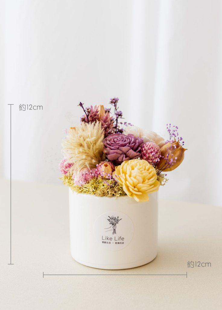 乾燥花開幕盆栽,乾燥花中型開幕盆栽紫色乾燥花盆栽