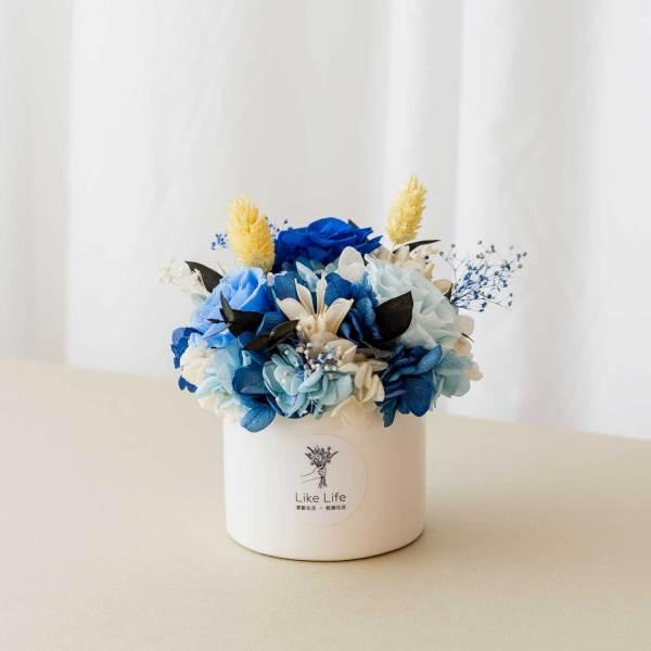 永生花盆栽中型藍色首圖,永生花盆栽推薦台北