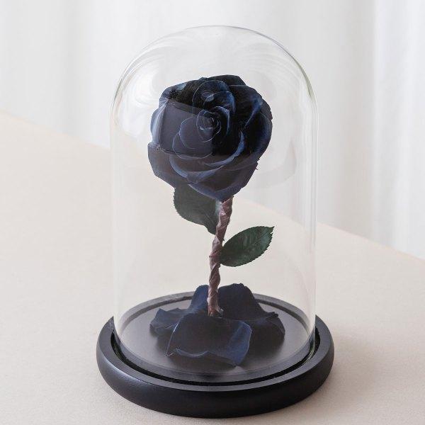 永生花玫瑰花,黑色永生花玫瑰正版封面