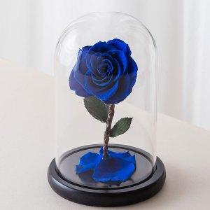 永生花玫瑰,藍色永生花玫瑰正版封面