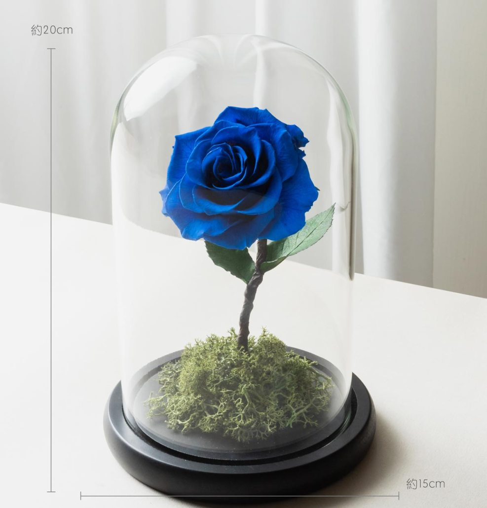 寶藍色永生玫瑰花尺寸照片,寶藍色永生玫瑰花玻璃罩