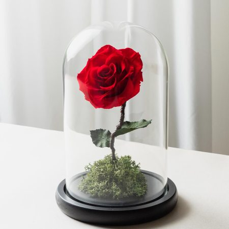 紅色永生玫瑰花玻璃罩封面-喜歡生活乾燥花店