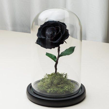 黑色永生玫瑰花玻璃罩封面-喜歡生活乾燥花店