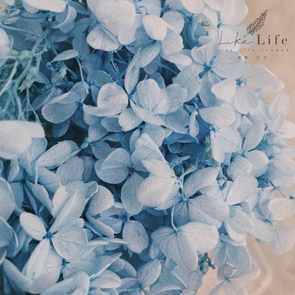 永生花繡球花,藍色永生繡球花
