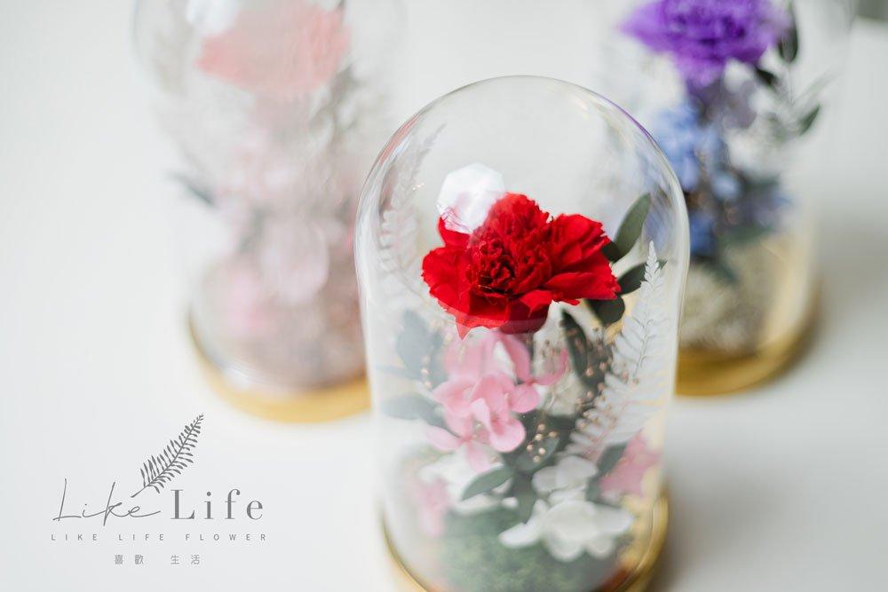 母親節永生花康乃馨花束紅色,永生花康乃馨玻璃罩推薦近照