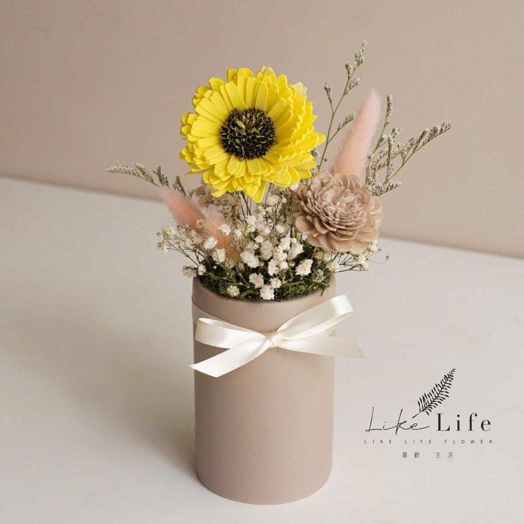 向日葵盆栽材料包黃色向日葵1