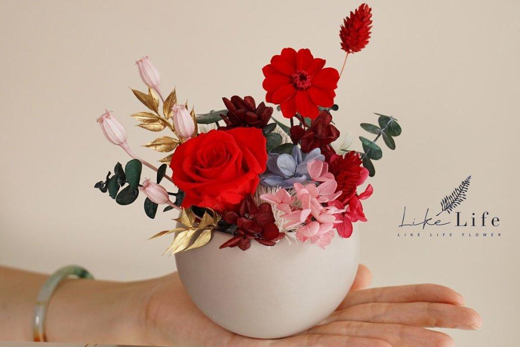永生花盆栽手拿特寫,紅色永生花