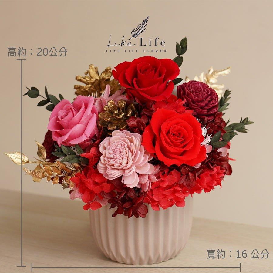 永生花盆栽-古典紅色永生花公分