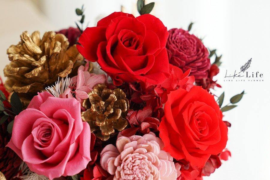 永生花盆栽-古典紅色永生花特寫,紅色永生花開幕盆栽