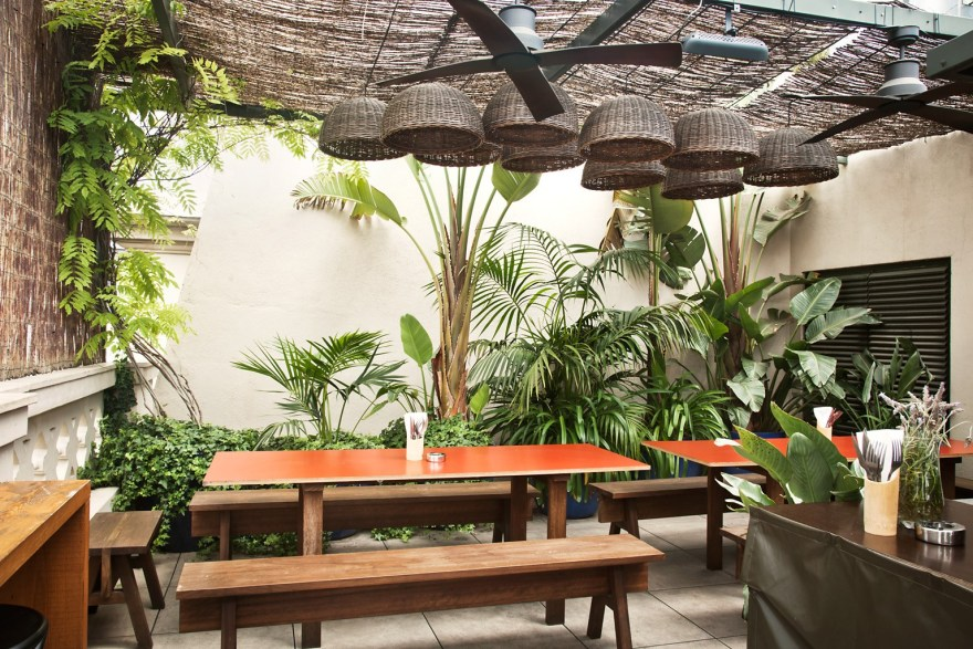 orange-table-wooden-benches-in-plant-filled-courtyard