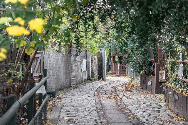 grey cobbled path inside surrounded by brown fences and a green trees