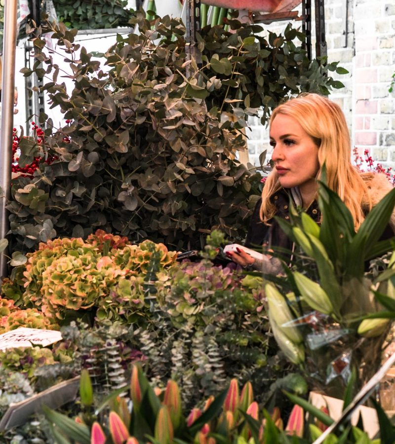 A Walking Guide Through London's Columbia Road Flower Market