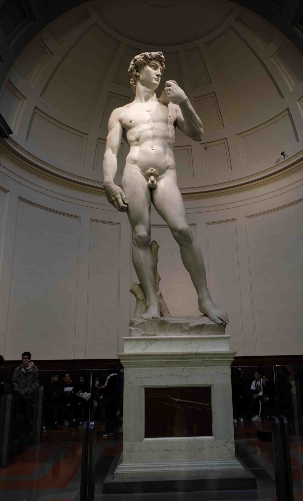 Visit Florence and Michelangelo's David and Duomo with Livitaly