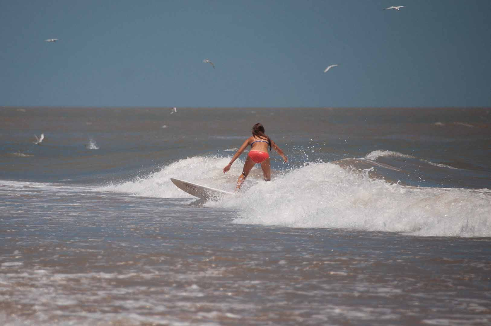 SurfsideLateJune_20150627_407