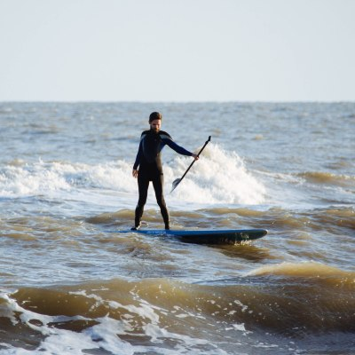 Stand Up and Paddleboard