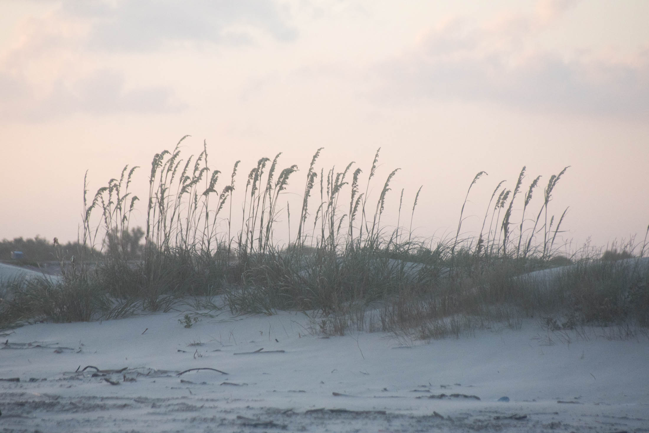 matagorda-beach-july-fourth-23