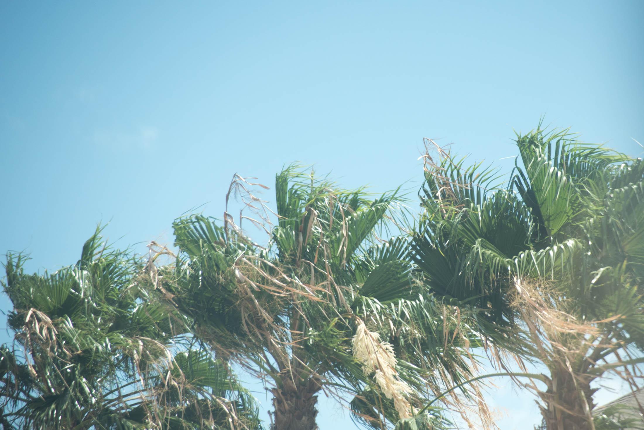 matagorda-beach-july-fourth-3