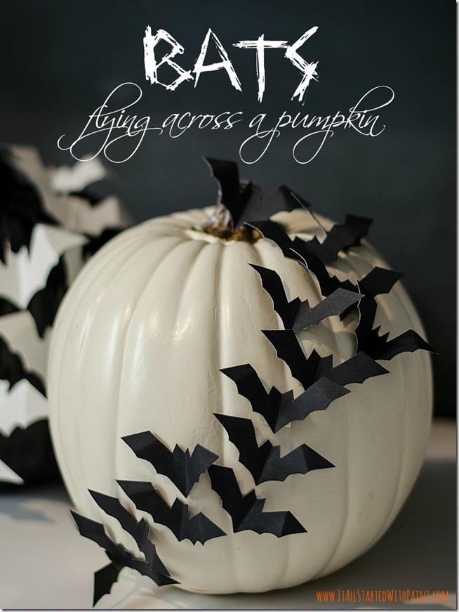 bats on pumpkin