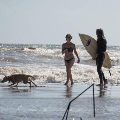 matagorda surfing