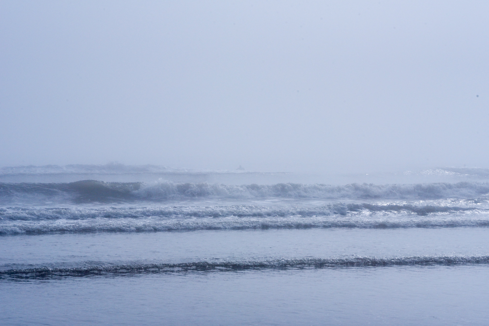 galveston fog surf