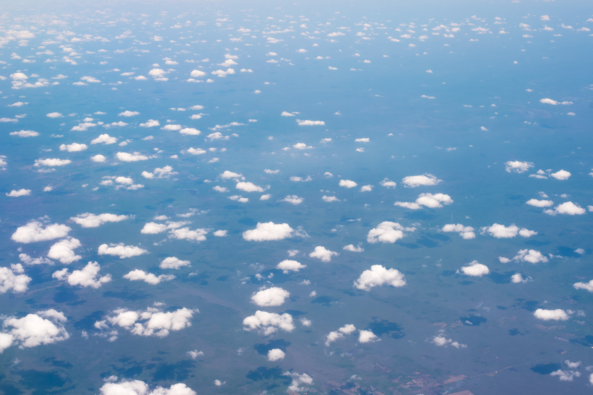 direct southwest costa rica flight