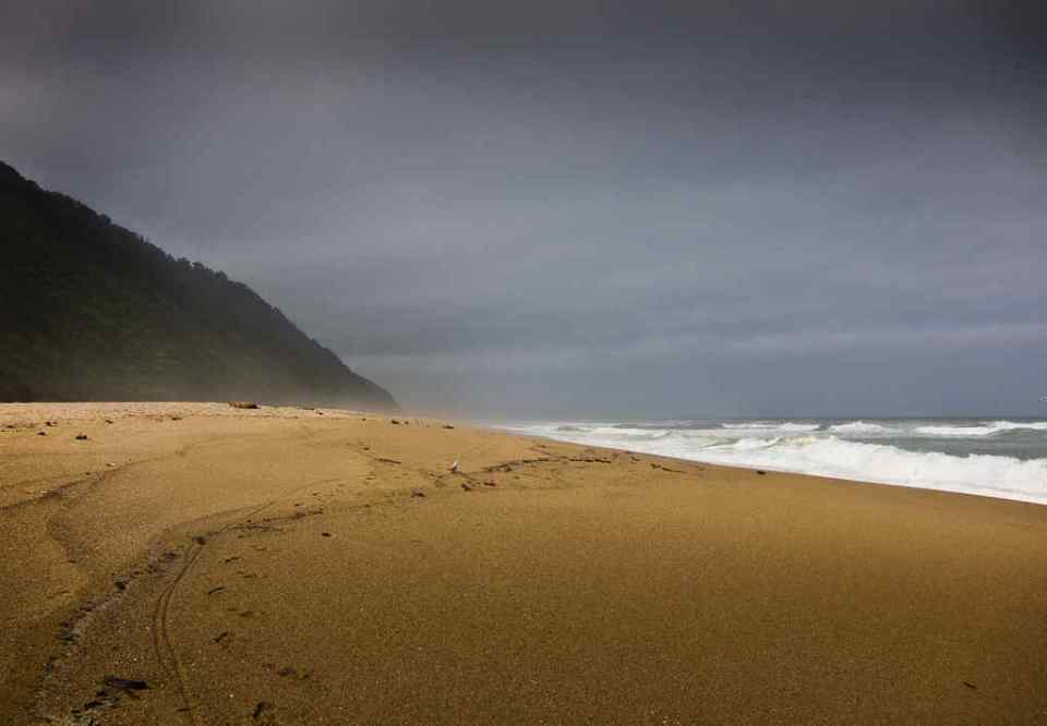 Heaphy track beach near Karamea