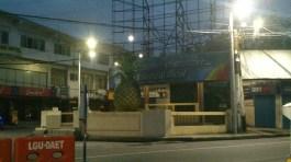 Pineapple at dawn
