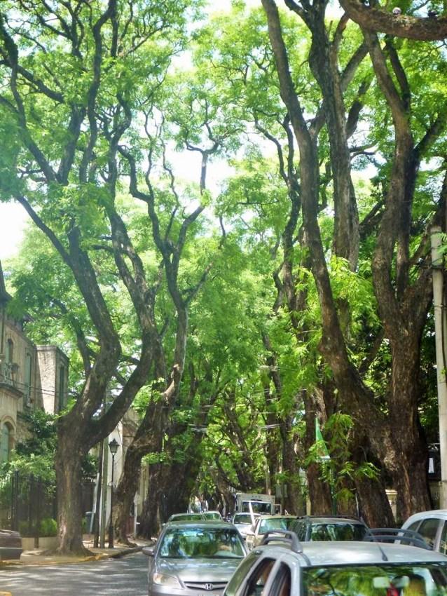 Rua charmosa e cheia de verde em San Isidro