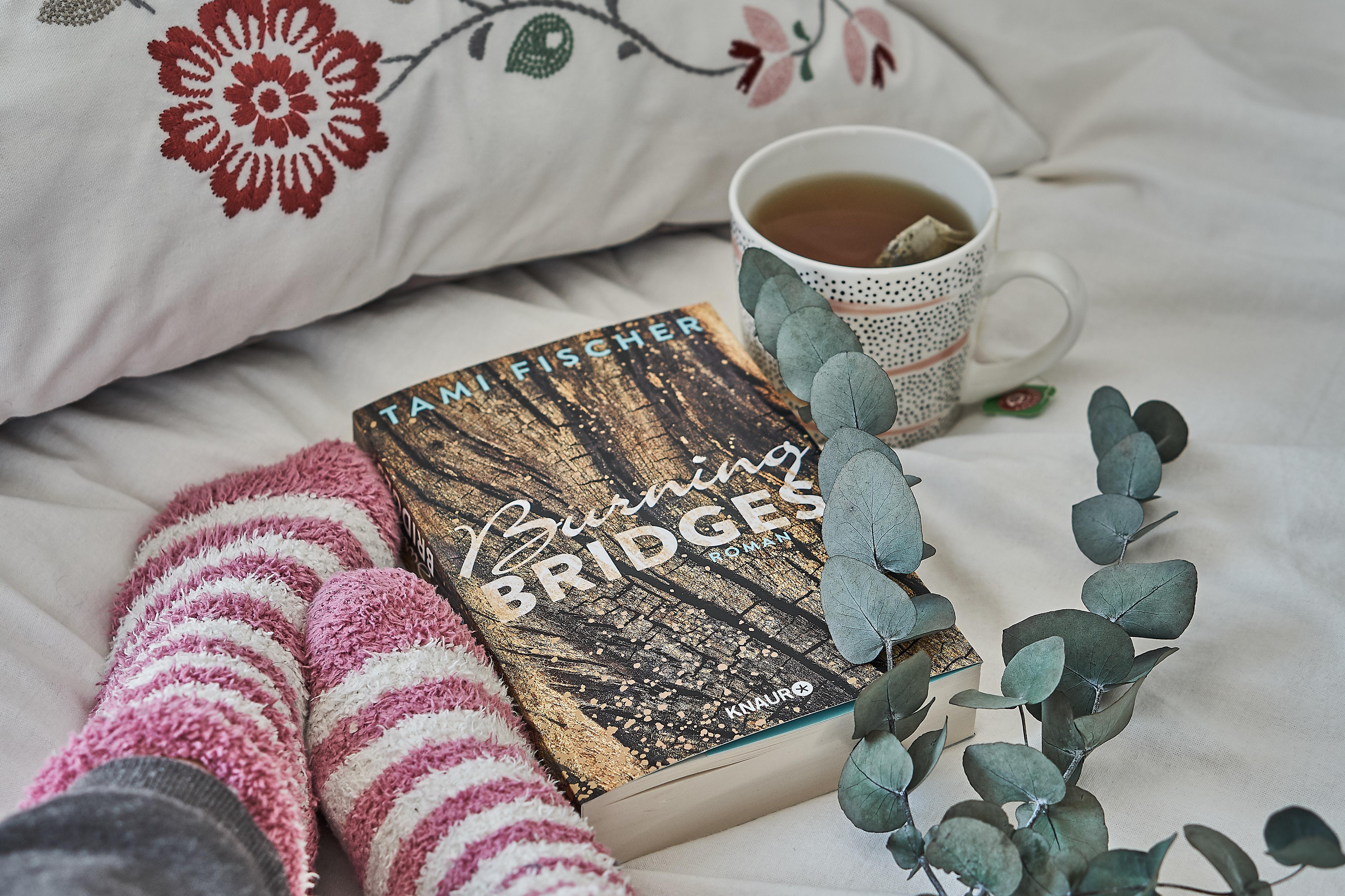 Rezension: Burning Bridges von Tami Fischer