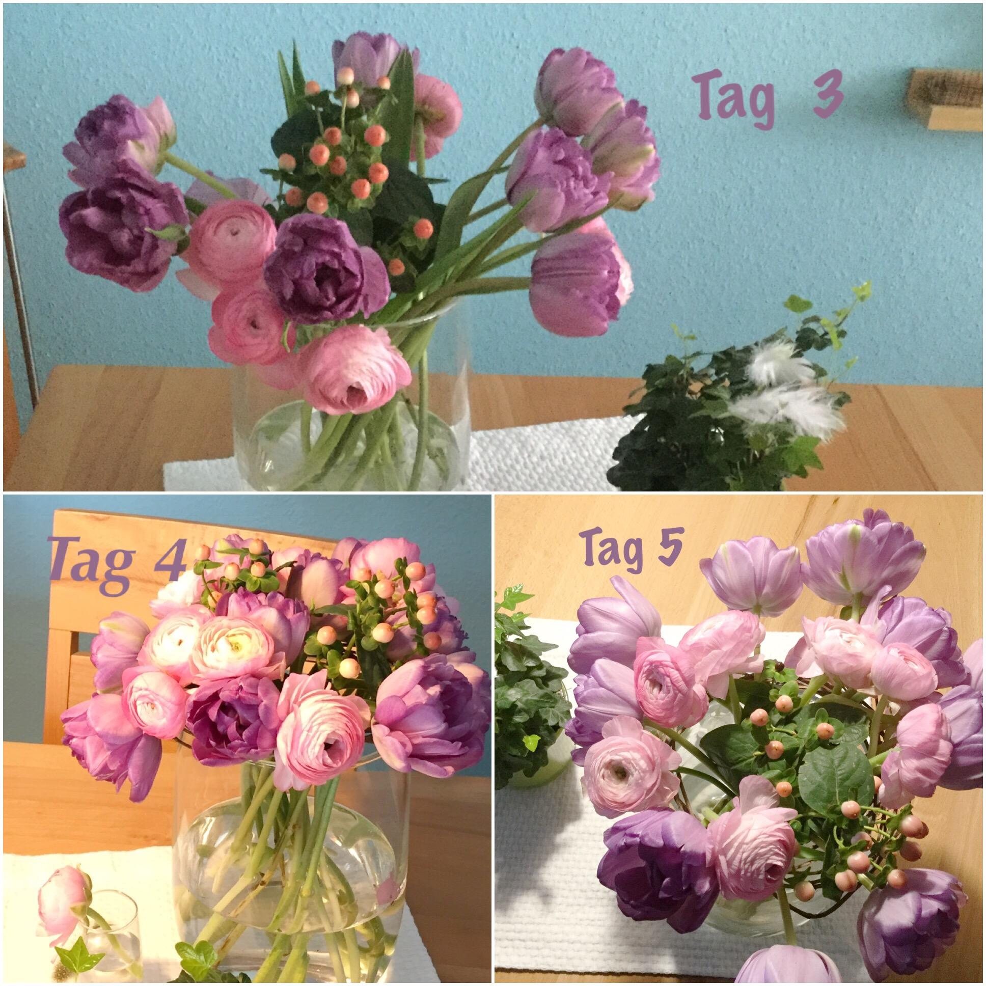 Friday-Flowerday – oder – Geschenkte Blümchen