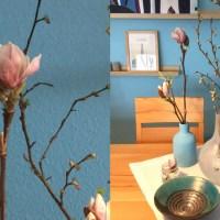 Friday-Flowerday - oder - Von großen und kleinen Blüten