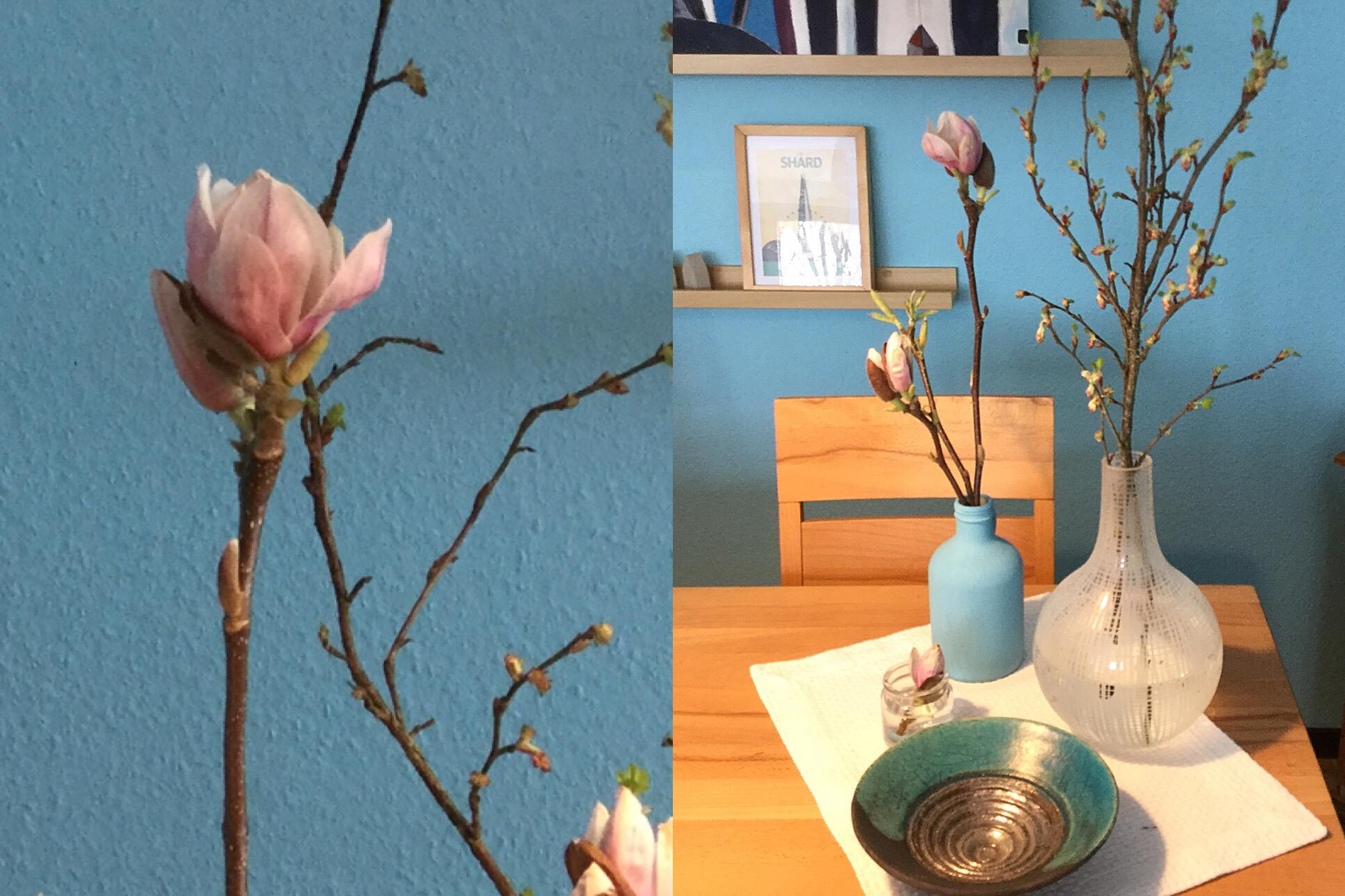 Friday-Flowerday – oder – Von großen und kleinen Blüten