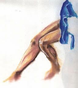 Pablos legs_sm