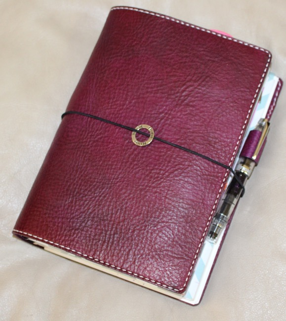 fountain pen, fountain pens TWSBI, affordable fountain pen, chic sparrow, carie harling violet