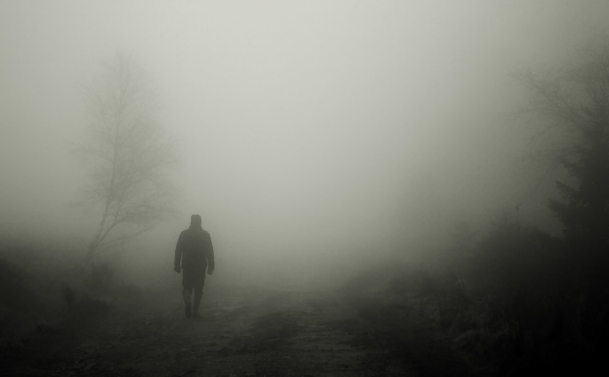 walkers, autumn, fog
