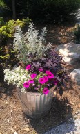 Using a Trash Can as a Planter
