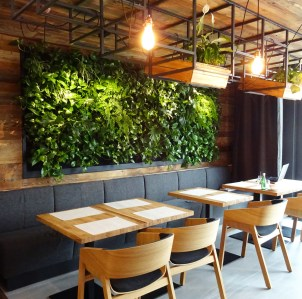 interior design green living wall art project ogrod wertykalny pl