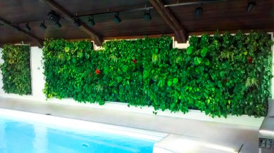 interior design green living wall in swimming pool project ogrod wertykalny pl