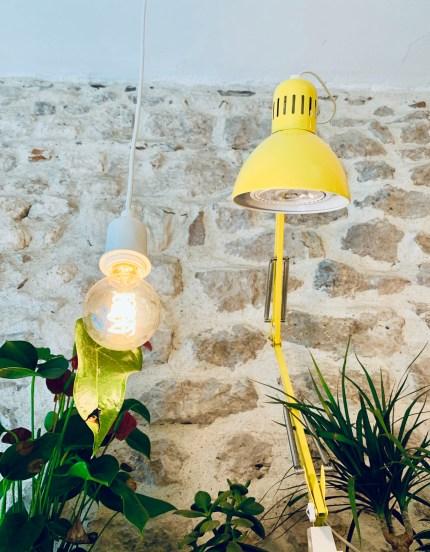 lampe-jaune-ampoule-plante-mur-pierres-lilideambule
