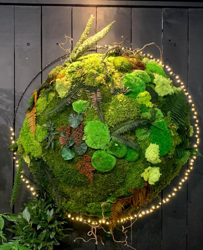 Création mur de végétaux stabilisés kokenendo